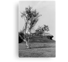 Normandy Landscape Black and White  Canvas Print