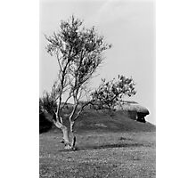 Normandy Landscape Black and White  Photographic Print