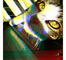 That's One Glitchin' Kitty Photographic Print