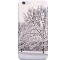 Raising With The Winterfrost iPhone Case/Skin