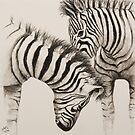 Zebras by JulieWickham