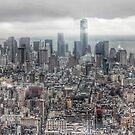 Manhattan New York City skyline by WAMTEES