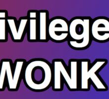 Privileged Wonk Red and Blue Sticker