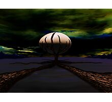 SURREALISM - Life Begins Photographic Print