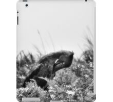 """Bow"" (B&W) iPad Case/Skin"