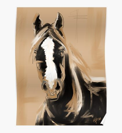 Horse Paint White Poster