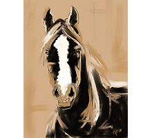 Horse Paint White Photographic Print