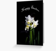 Easter Daffodils #3 Greeting Card