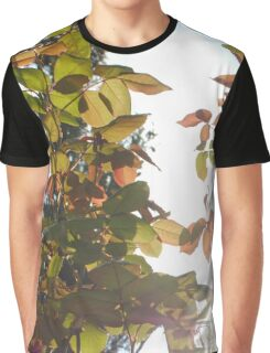 leaf in the wind Graphic T-Shirt