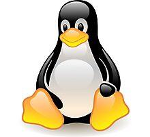 Linux Logo Photographic Print