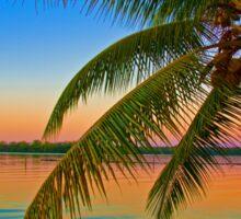 Guatemala. Atlantic Coast. Palm Tree. Sunset. Sticker