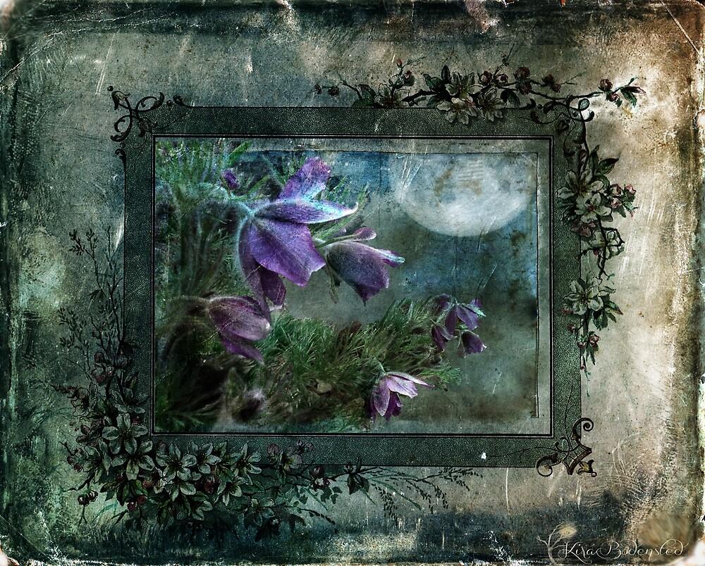 Moonlight Sonata by © Kira Bodensted