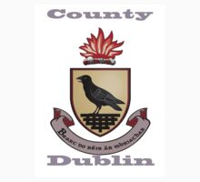 County Dublin Coat of Arms Kids Tee