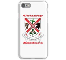 County Kildare Coat of Arms iPhone Case/Skin