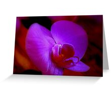 Purple Passion ^ Greeting Card