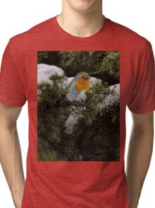 Robin in the winter Tri-blend T-Shirt