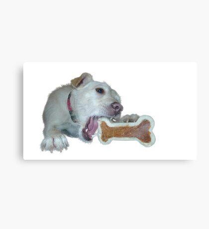 cute dog enjoys its bone Canvas Print