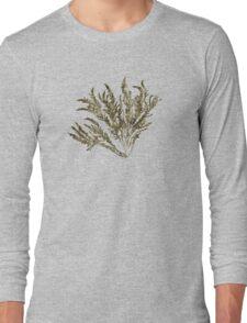 Seaweed Plant Art Long Sleeve T-Shirt