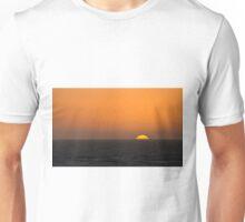 Sunset and Gulls Unisex T-Shirt