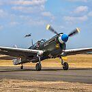"""Curtiss P-40N Warhawk 42-105915/12 F-AZKU """"Little Jeanne""""  by Colin Smedley"""