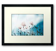 Poppy Dream Framed Print