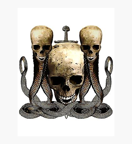 The Vengeance Of Pirates Photographic Print