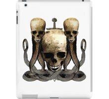 The Vengeance Of Pirates iPad Case/Skin