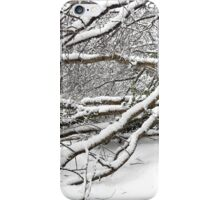 SNOW SCENE 2 iPhone Case/Skin