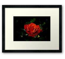 With All My Love Framed Print