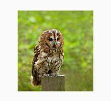 Tawny Owl three quarter profile Unisex T-Shirt