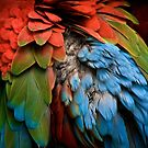 Parrot Feathers by Adam Bykowski