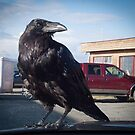 Our New Hood Ornament by Yukondick
