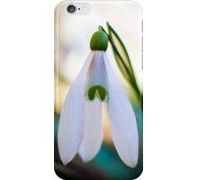 Single Snowdrop flower iPhone Case/Skin