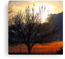 Amongst A Sunset Canvas Print