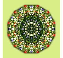 Wildflower, Flower Mandala, Floral mandala-style Photographic Print