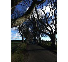 Dark hedges blue skies Photographic Print