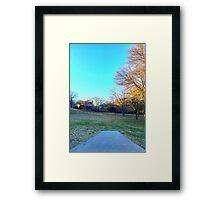 Neighborhood Disc Golf Framed Print