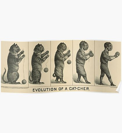 Baseball history, 1889 drawing Evolution of a cat-cher Poster