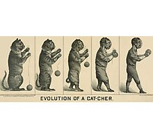 Baseball history, 1889 drawing Evolution of a cat-cher Photographic Print