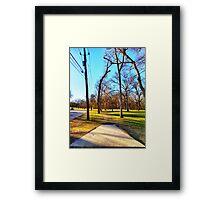 Roadside Shot Through the Trees Framed Print