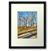 Shaded Tee Pad Looking Through the Woods Framed Print