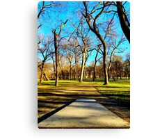 Dirt Path to the Basket Canvas Print
