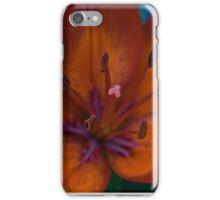 Spring Flower Series 47 iPhone Case/Skin