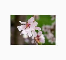 Spring Flower Series 49 Unisex T-Shirt
