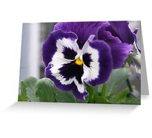 Spring Flower Series 53 Greeting Card