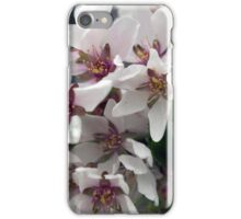 Spring Flower Series 56 iPhone Case/Skin