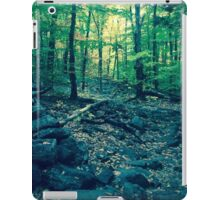 A Voyage Through the Woods iPad Case/Skin