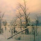 Winter's Twilight ! by Elfriede Fulda