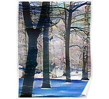 """Central Park Wearing Winter Storm Jonas""©1302016 by Steven Phoenix Poster"