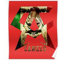 Canelo Alvarez Classic Poster